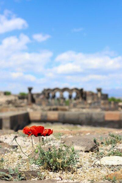 Armenisch Lernen Mit Superlearning Technologie 2020